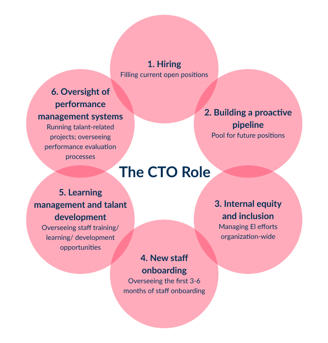 The CTO is a crucial role in the process of looking for how to find a programmer for your startup